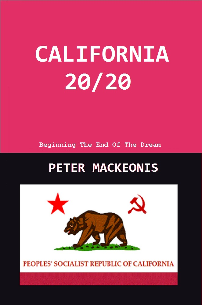 CALIFORNIA 20/20  - the dystopian novel by peter mackeonis